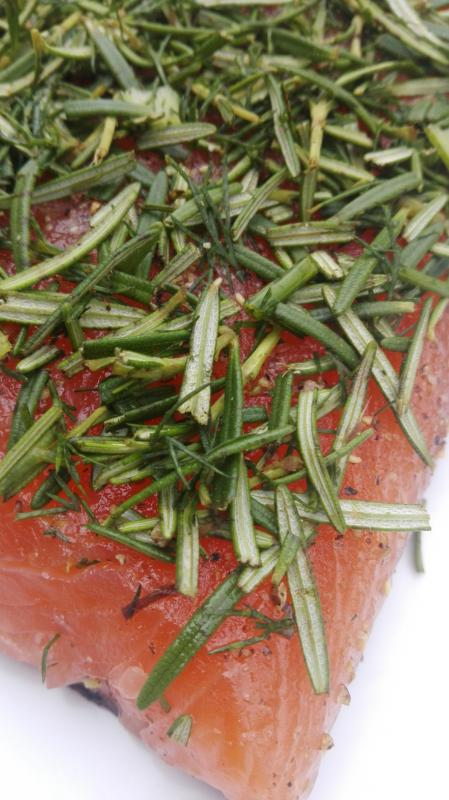 Salmon marinated with honey and fresh rosemary