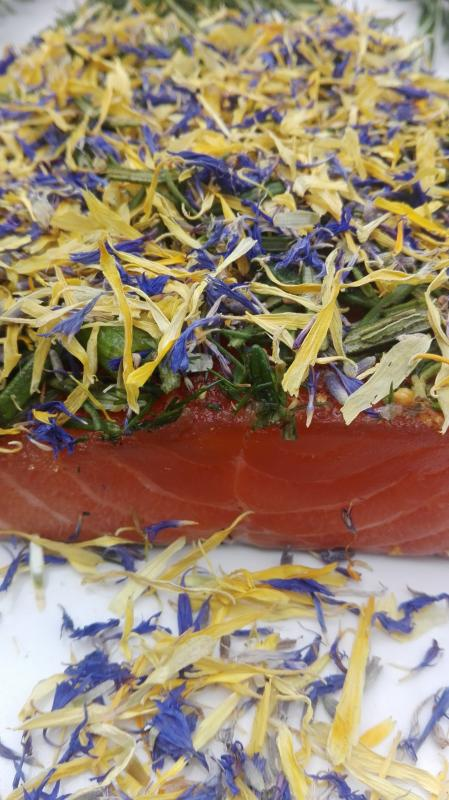 Salmon marinated with rosemary, dill and marigold / violet