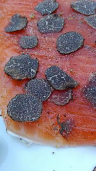 Salmon marinated with Black ALBA Truffle Tuber Aestivum Vitt