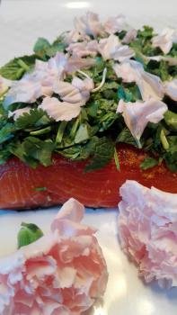 Salmon-marinated-with-coriander--mint-and-fresh-flowers-of-cloves-108