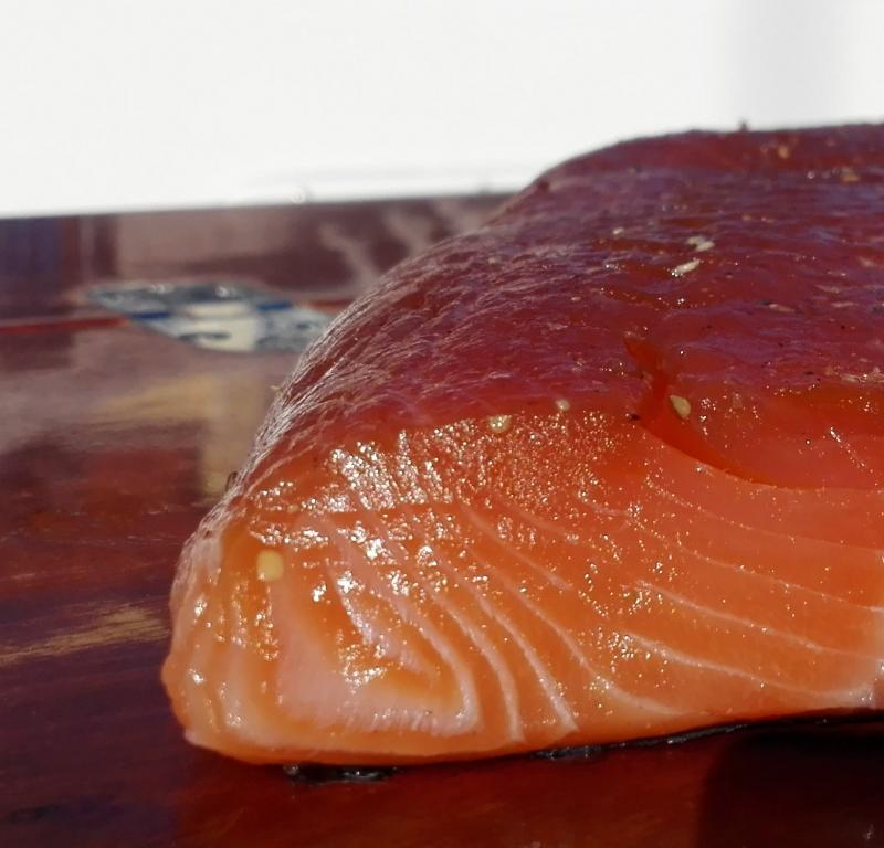 Salmon marinated, plain