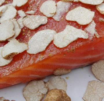 Salmon marinated with WHITE truffles (tuber oligospermum)