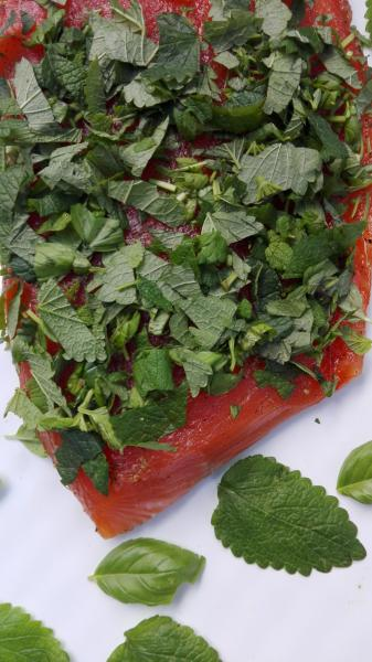 Salmon marinated with basil and lemon balm