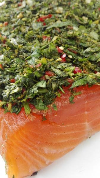 Graved-salmon--mojo--with-canary-spices--green-and-fresh-coriander