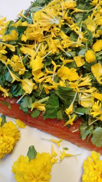 Salmon marinated with coriander, mint and fresh flower Tagetes (student flower)