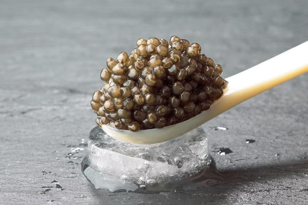 Huso Huso | Royal Beluga Caviar | Luxury Caviar. Melt creamy and tender on the tongue.